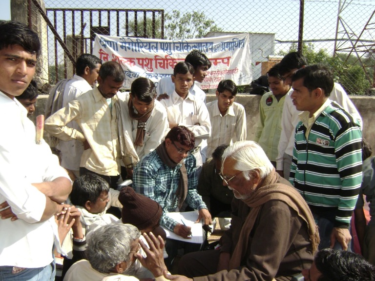 Animal Healthcare Camps